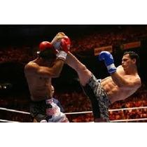 Boxe , Muai Thay , Judo E Jiu Jitsu 4 Dvds 18 Horas De Video