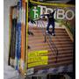 40 Revistas De Skate 100% Skatemag Grátis Pôsters + 2 Tribo