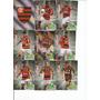 Cards Adrenalyn Xl Cb2014 - Flamengo Completo