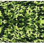 Adesivo Verde Exército Fosco Para Envelopamento De Carro