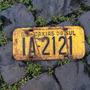 Placa Amarela Antiga Dianteira Ia-2121 Caxias Do Sul - Rs