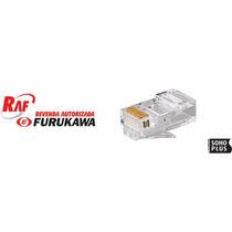 Conector Macho Rj-45 Furukawa Cat 5e - Pacote Com 10