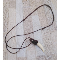 Colar Cordão Masculino Feminino Dente De Jacaré
