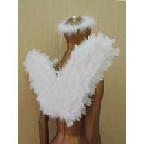 Asa De Anjo Branca Com Aureola Para Coroação