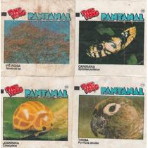 Figurinha Chiclé Ping Pong - Álbum Pantanal - X9
