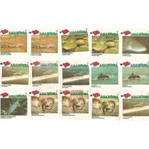 Figuras Ping Pong Pantanal Amazônia Fundo Do Mar Records Etc