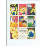 Pokémon-1995-2000 - Nintendo - Compra Minima 6 Reais