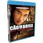 Cão De Briga - Blu-ray - Frete Grátis (sul E Sudeste)