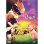 Dvd Babe O Porquinho Atrapalhado