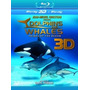 Blu-ray 3d Dolphins And Whales [ Jean Michel Cousteau ]