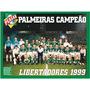 Dvd Box S. E. Palmeiras Campeão Libertadores 1999 - O Verdão