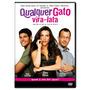 Dvd Qualquer Gato Vira-lata Cleo Pires Malvino Salvador