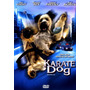Karate Dog - Dvd - Jon Voight - Simon Rex - Jaime Pressly