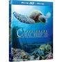 Blu-ray 3d E 2d Coral Reef Fascinação Com Luva -dublado