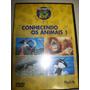 Dvd - Conhecendo Os Animais 1 - Discovery Kids - Nacional