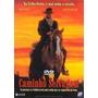 Dvd Original Do Filme Caminho Selvagem
