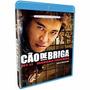 Blu-ray - Cão De Briga