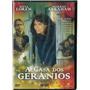 Dvd A Casa Dos Gerânios Sofia Loren- Raro/origin/lacrado/nov