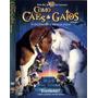 Dvd Como Cães E Gatos - Seminovo