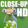 Kit Macro Close-up Fullhd (4 Lentes) Sony Nex-3 Nex-c3 Nex-5
