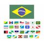 Bandeira Estados Brasileiro Tenho Todos 27 Estado Brasil