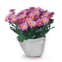 Vaso Jardineira Para Plantas,na Parede Importado(kit 2 Peças