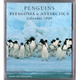 Calendário 2009 Fotos - Penquins Patagonia & Antarctica