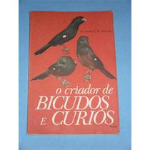 Livro Criaçao Bicudos E Curios