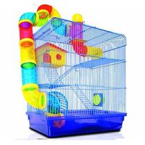 Gaiola Hamster Roedores Labirinto 3 Andares Bbbpet Pet Shop