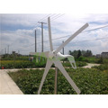 Turbina De Energia Eólica De 5 Lâminas 400 W Max 600 W Gera