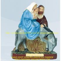 Escultura Nossa Senhora Desterro Linda Imagem 20cm Fabrica