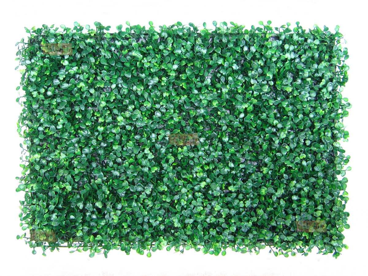 grama sintetica para jardim mercadolivre:Grama Artificial Buchinho Muro Inglês Placa Grande 59x40cm – R$ 39,50