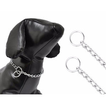 Colar Enforcador Elo Chato Para Cães Cachorros Tam 6