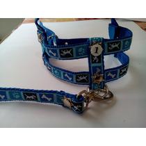Conjunto Peitoral E Guia Para Cães De Pequeno Porte