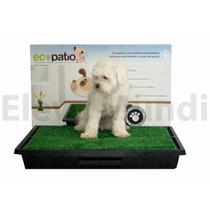 Sanitario Canino P/ Cães Grama Ecopatio Pet Park O Melhor
