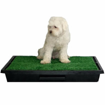 Sanitário Canino P/ Cães Grama Artificial Ecopatio Pet Park