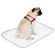 Tapete Higienico Lavável P 50x60 Caes Canino Cachorro