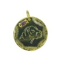 Placa De Identificação Do Beagle, Em Banho De Ouro