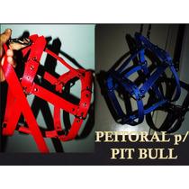 Peitoral Tração Para Pit Bull