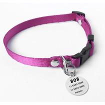 Kit Identificação Cães Pequenos Gatos Coleira Rosa E Placa