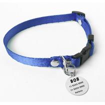Kit Identificação Cães Pequenos Coleira Azul E Placa
