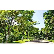 Terreno Capitalville ( Capital Ville ) - Aclive Com Vista