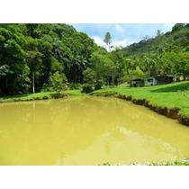 Juquitiba/33.000 Mts/churras/piscina/caseiro/pomar/ref:02549