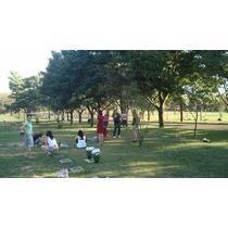 Vendo Jazigo Cemitério Parque Das Flores F:(19) 3384-7804