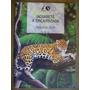 Jaguaretê A Onça-pintada Rosana Rios