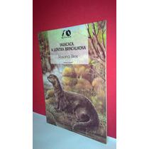 Livro A Lontra Brincalhona Rosana Rios Editora Scipione/1996