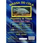 Massa Para Pesca Do Cola 1kg (2x500gr) - Tilápia