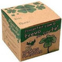 Kit Vamos Plantar - Trevo De Quatro Folhas