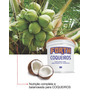 Fertilizantes Forth Coqueiros 25 Quilos - Top De Linha