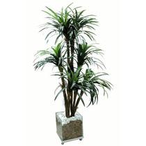 Planta Artificial Dracena Vaso De Vidro 30x30